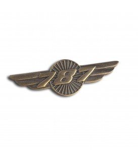 Boeing 787 Wings Pin